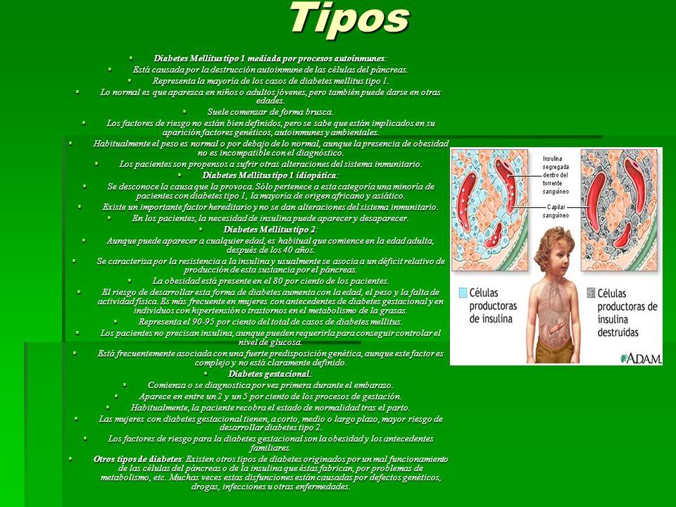 Tipos Diabetes Mellitus tipo 1 mediada por procesos autoinmunes: Diabetes Mellitus tipo 1 mediada por procesos autoinmunes: Está causada por la destrucción autoinmune de las células del páncreas.
