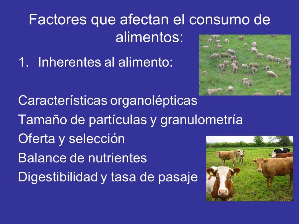 Factores que afectan el consumo de alimentos: 1.Inherentes al alimento: Características organolépticas Tamaño de partículas y granulometría Oferta y s