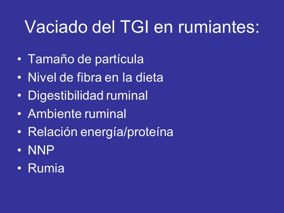 Vaciado del TGI en rumiantes: Tamaño de partícula Nivel de fibra en la dieta Digestibilidad ruminal Ambiente ruminal Relación energía/proteína NNP Rum