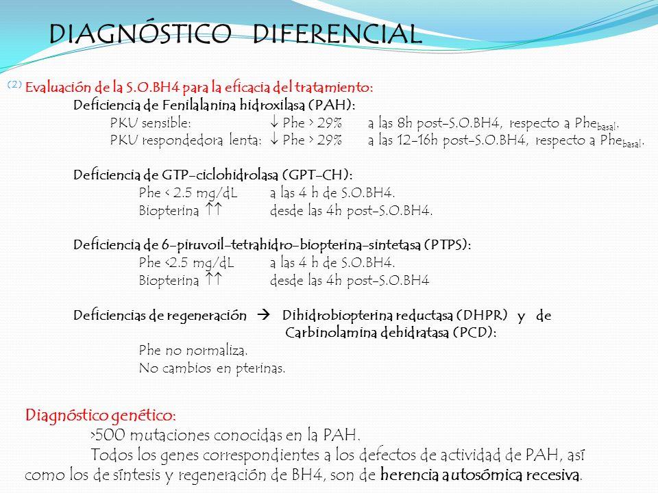 DIAGNÓSTICO DIFERENCIAL (2) Evaluación de la S.O.BH4 para la eficacia del tratamiento: Deficiencia de Fenilalanina hidroxilasa (PAH): PKU sensible: Ph