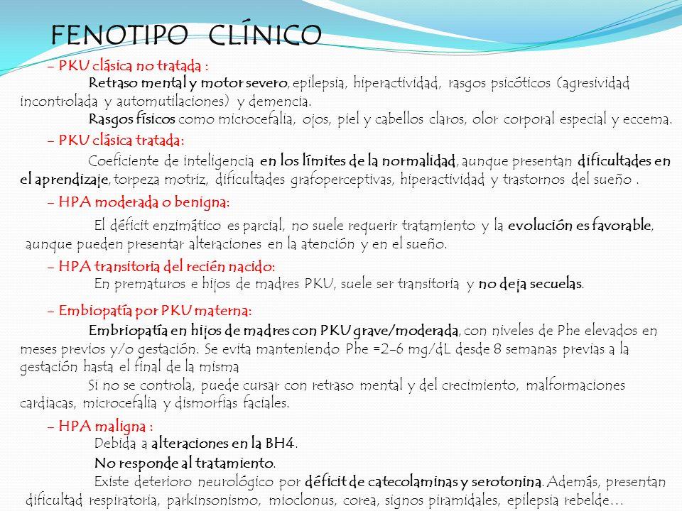 FENOTIPO CLÍNICO - PKU clásica no tratada : - PKU clásica tratada: - HPA moderada o benigna: - HPA transitoria del recién nacido: - Embiopatía por PKU
