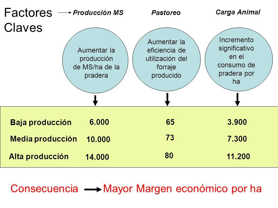 Baja producción 6.00065 Media producción 10.000 73 3.900 7.300 Consecuencia Mayor Margen económico por ha Aumentar la producción de MS/ha de la prader