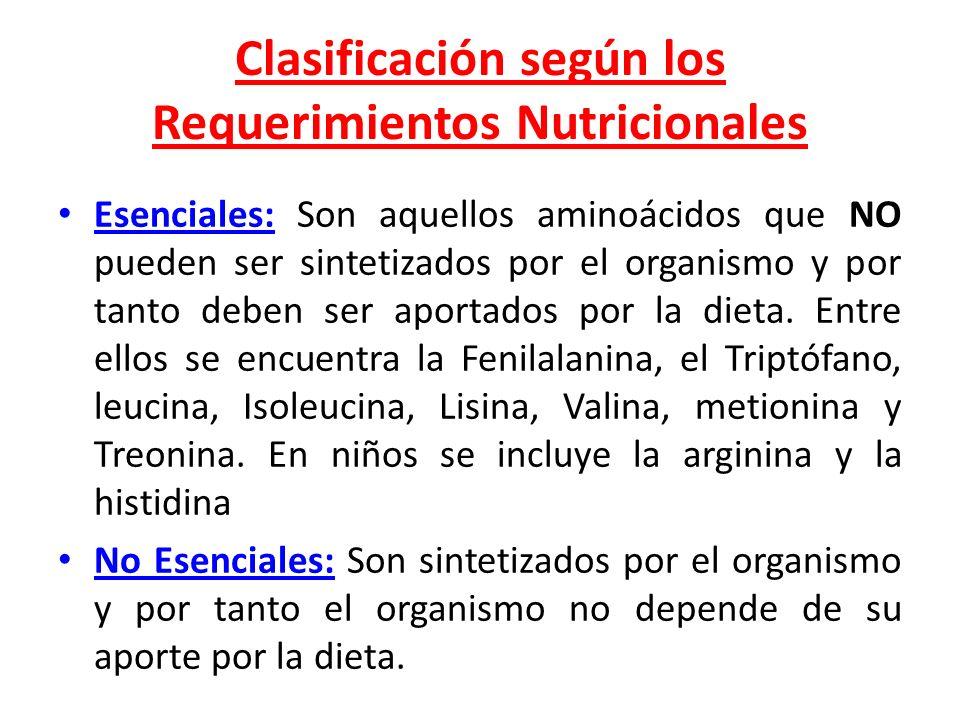 Clasificación según los Requerimientos Nutricionales Esenciales: Son aquellos aminoácidos que NO pueden ser sintetizados por el organismo y por tanto