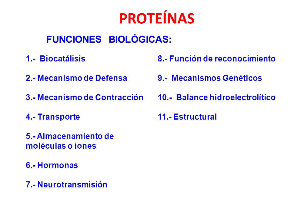 PROTEÍNAS FUNCIONES BIOLÓGICAS: 1.- Biocatálisis 2.- Mecanismo de Defensa 3.- Mecanismo de Contracción 4.- Transporte 5.- Almacenamiento de moléculas