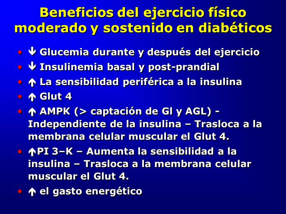 Beneficios del ejercicio físico moderado y sostenido en diabéticos Glucemia durante y después del ejercicio Insulinemia basal y post-prandial La sensi