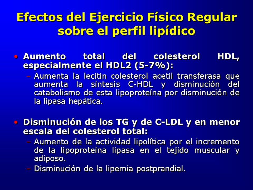 Efectos del Ejercicio Físico Regular sobre el perfil lipídico Aumento total del colesterol HDL, especialmente el HDL2 (5-7%): –Aumenta la lecitin cole