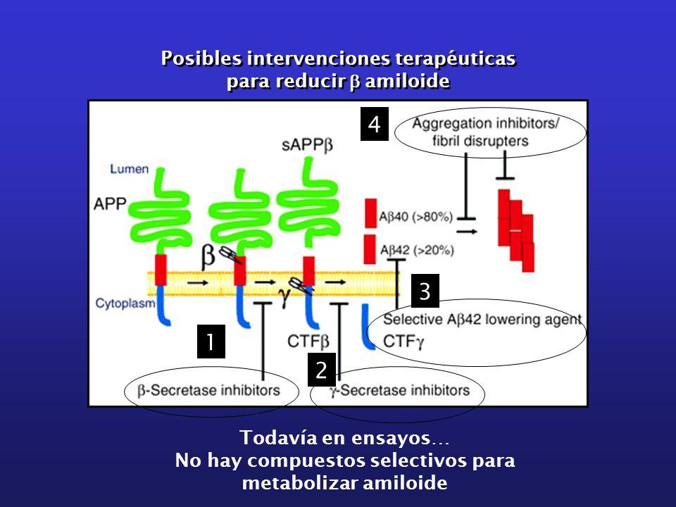 Posibles intervenciones terapéuticas para reducir amiloide Posibles intervenciones terapéuticas para reducir amiloide 1 2 3 4 Todavía en ensayos… No h