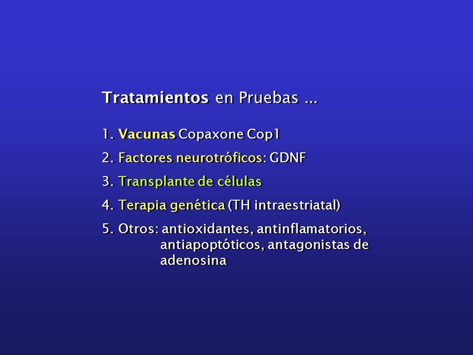 Tratamientos en Pruebas... 1. Vacunas Copaxone Cop1 2. Factores neurotróficos: GDNF 3. Transplante de células 4. Terapia genética (TH intraestriatal)