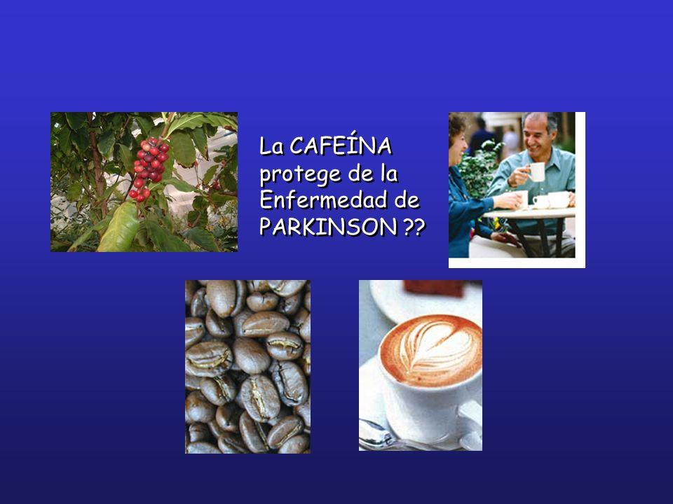 La CAFEÍNA protege de la Enfermedad de PARKINSON ??