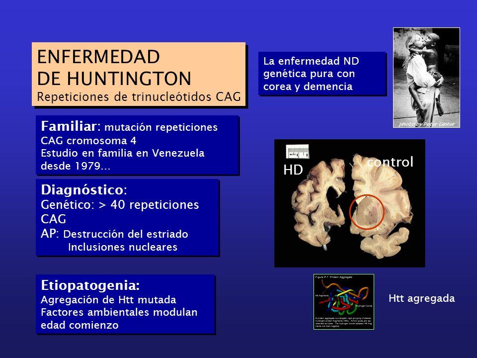 ENFERMEDAD DE HUNTINGTON Repeticiones de trinucleótidos CAG ENFERMEDAD DE HUNTINGTON Repeticiones de trinucleótidos CAG Familiar: mutación repeticione