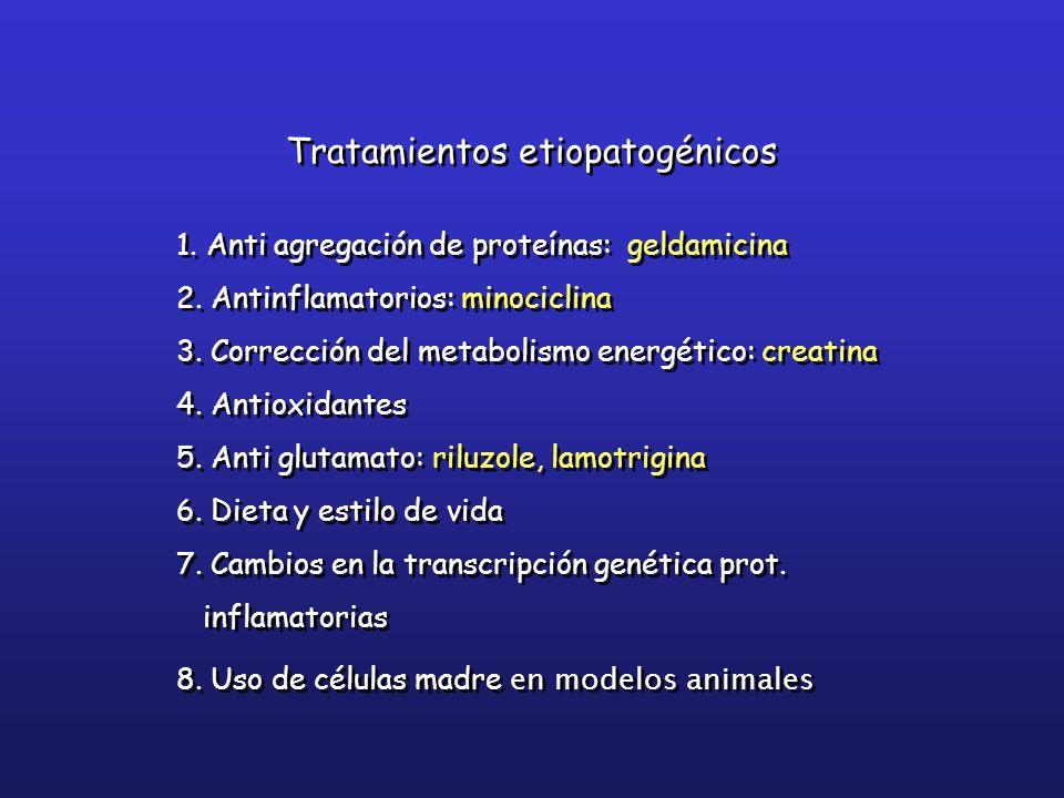 1. Anti agregación de proteínas: geldamicina 2. Antinflamatorios: minociclina 3. Corrección del metabolismo energético: creatina 4. Antioxidantes 5. A