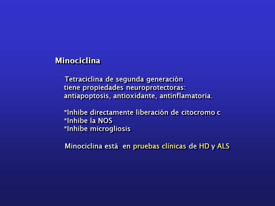 Minociclina Tetraciclina de segunda generación tiene propiedades neuroprotectoras: antiapoptosis, antioxidante, antinflamatoria. *Inhibe directamente