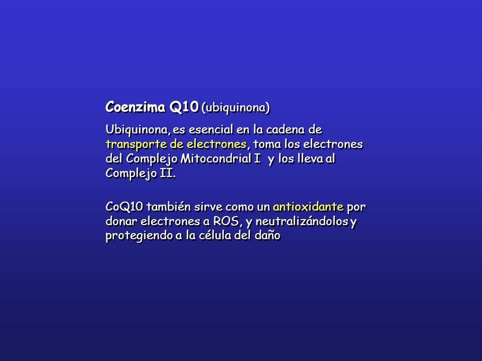 Coenzima Q10 (ubiquinona) Ubiquinona, es esencial en la cadena de transporte de electrones, toma los electrones del Complejo Mitocondrial I y los llev