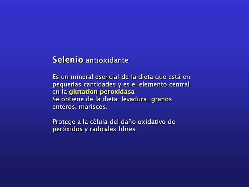 Selenio antioxidante Es un mineral esencial de la dieta que está en pequeñas cantidades y es el elemento central en la glutation peroxidasa Se obtiene