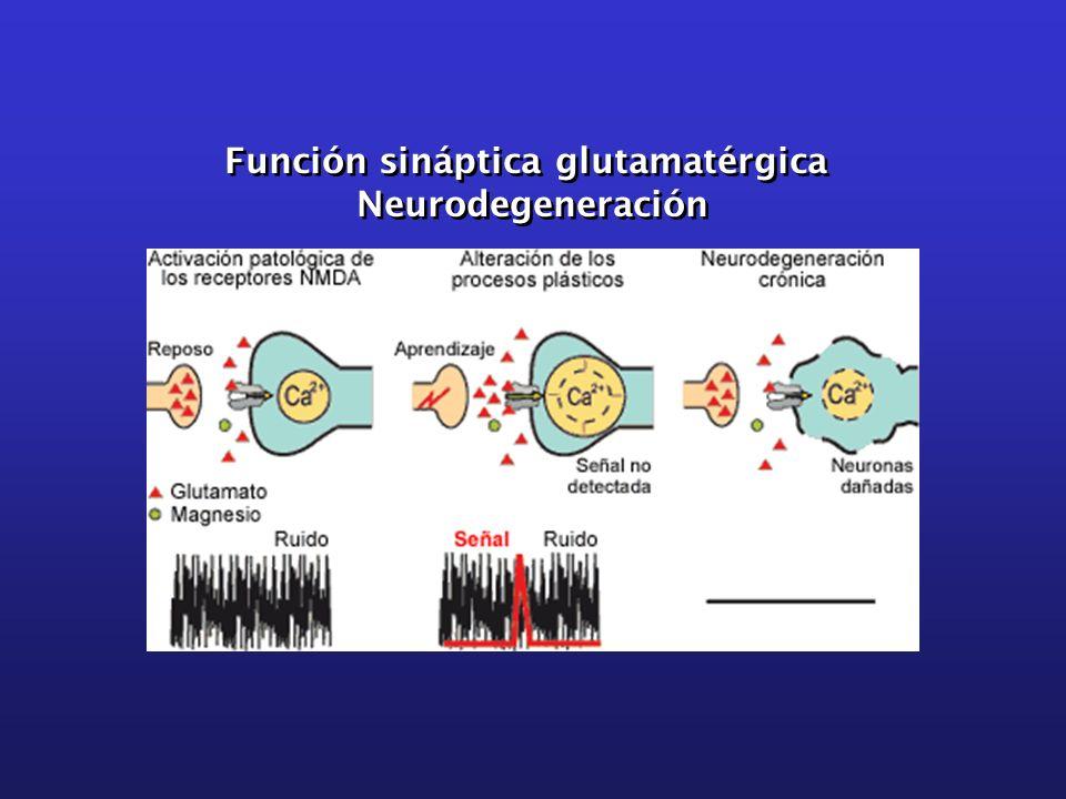 Función sináptica glutamatérgica Neurodegeneración Función sináptica glutamatérgica Neurodegeneración