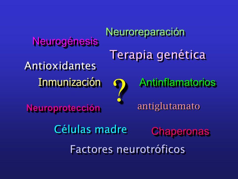 NeurogénesisNeurogénesis ChaperonasChaperonas NeuroprotecciónNeuroprotección AntinflamatoriosAntinflamatorios InmunizaciónInmunización ?? Neuroreparac