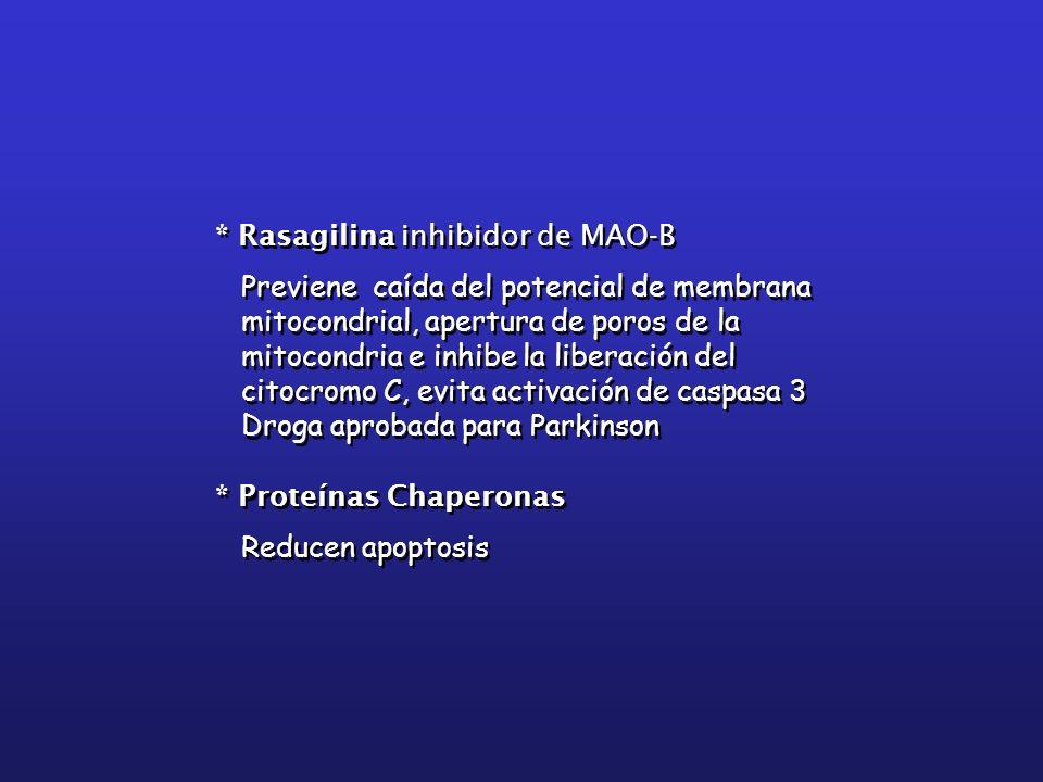 * Rasagilina inhibidor de MAO-B Previene caída del potencial de membrana mitocondrial, apertura de poros de la mitocondria e inhibe la liberación del