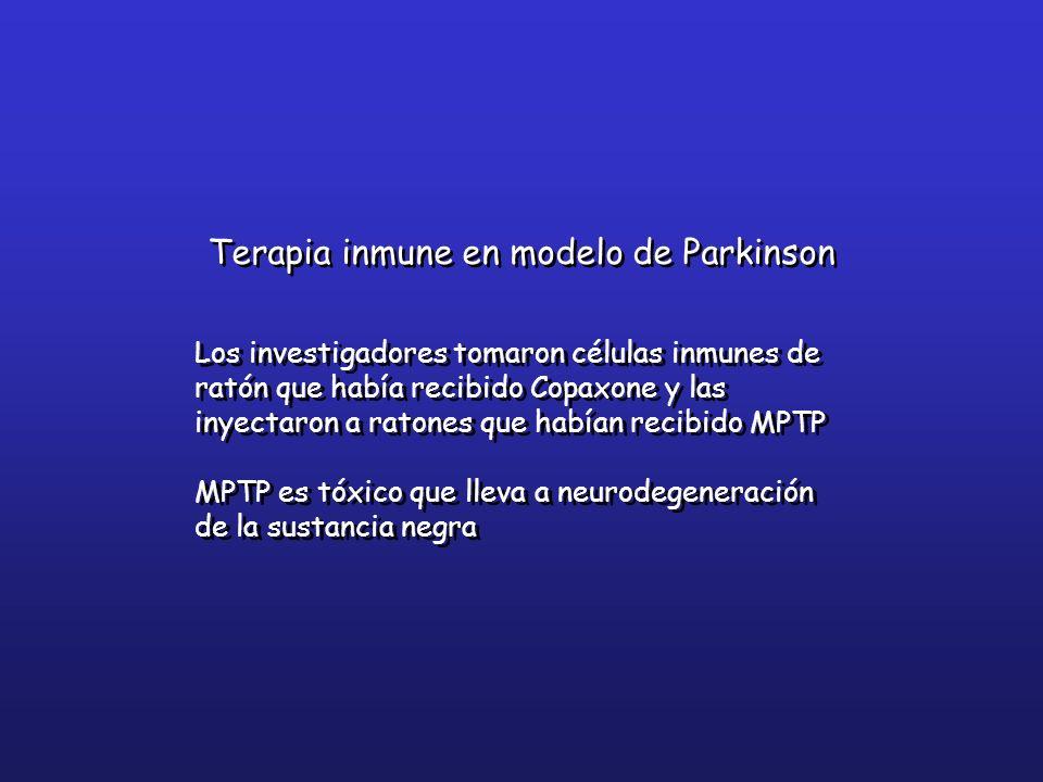 Los investigadores tomaron células inmunes de ratón que había recibido Copaxone y las inyectaron a ratones que habían recibido MPTP MPTP es tóxico que
