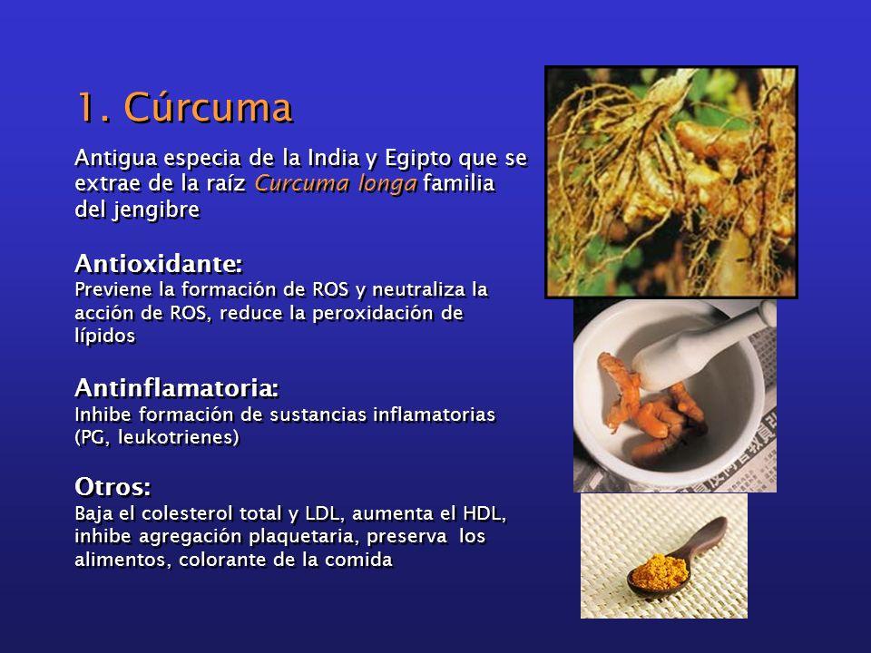 1. Cúrcuma Antigua especia de la India y Egipto que se extrae de la raíz Curcuma longa familia del jengibre Antioxidante: Previene la formación de ROS
