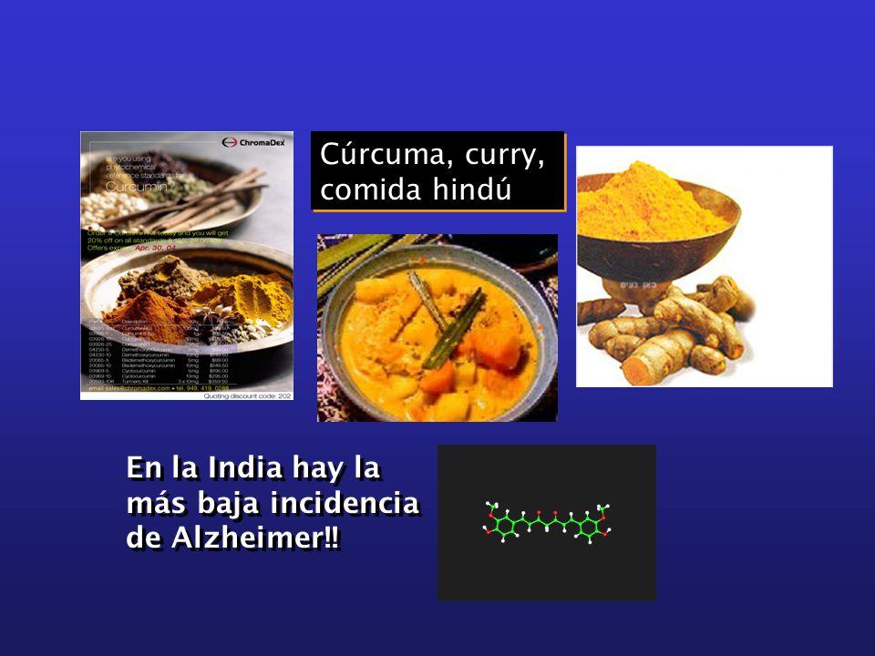Cúrcuma, curry, comida hindú Cúrcuma, curry, comida hindú En la India hay la más baja incidencia de Alzheimer!!