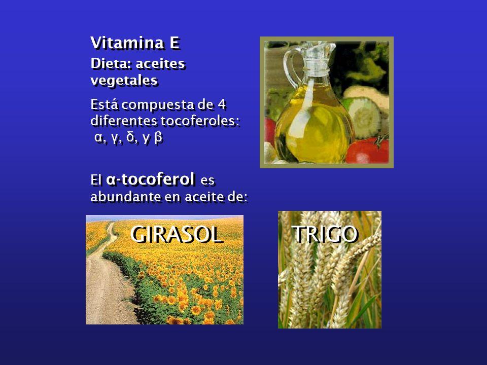 Vitamina E Dieta: aceites vegetales Está compuesta de 4 diferentes tocoferoles: α, γ, δ, y β El α -tocoferol es abundante en aceite de: Vitamina E Die