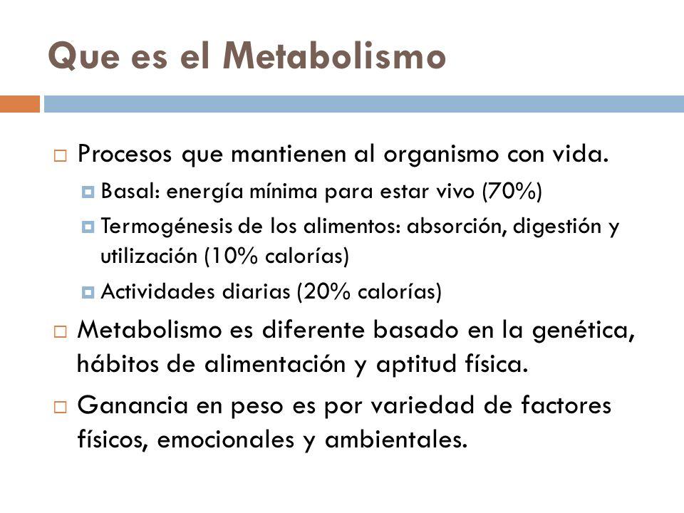 Que es el Metabolismo Procesos que mantienen al organismo con vida. Basal: energía mínima para estar vivo (70%) Termogénesis de los alimentos: absorci