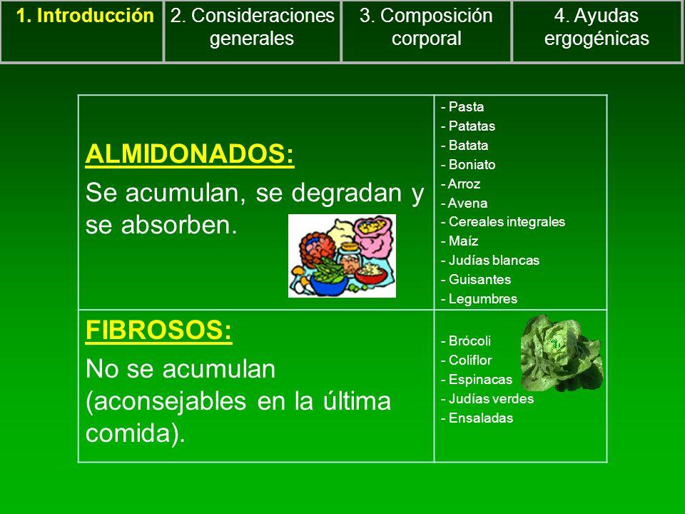ALMIDONADOS: Se acumulan, se degradan y se absorben. - Pasta - Patatas - Batata - Boniato - Arroz - Avena - Cereales integrales - Maíz - Judías blanca