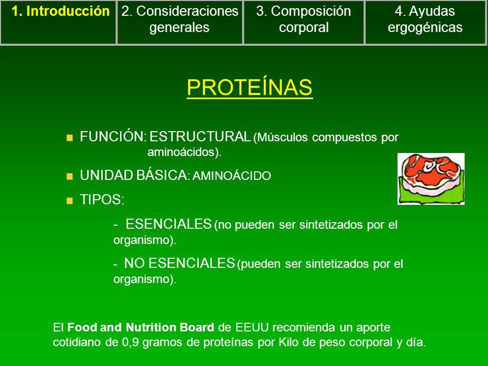 PROTEÍNAS FUNCIÓN: ESTRUCTURAL (Músculos compuestos por aminoácidos). UNIDAD BÁSICA : AMINOÁCIDO TIPOS: - ESENCIALES (no pueden ser sintetizados por e