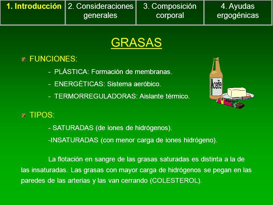 GRASAS FUNCIONES: - PLÁSTICA: Formación de membranas. - ENERGÉTICAS: Sistema aeróbico. - TERMORREGULADORAS: Aislante térmico. TIPOS: - SATURADAS (de i
