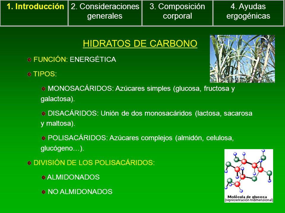 1. Introducción2. Consideraciones generales 3. Composición corporal 4. Ayudas ergogénicas HIDRATOS DE CARBONO FUNCIÓN: ENERGÉTICA TIPOS: MONOSACÁRIDOS