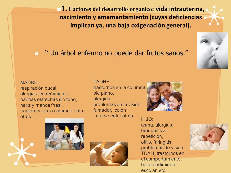 1. Factores del desarrollo orgánico : vida intrauterina, nacimiento y amamantamiento (cuyas deficiencias implican ya, una baja oxigenación general). U