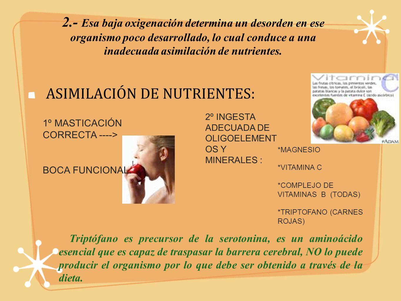 2.- Esa baja oxigenación determina un desorden en ese organismo poco desarrollado, lo cual conduce a una inadecuada asimilación de nutrientes.