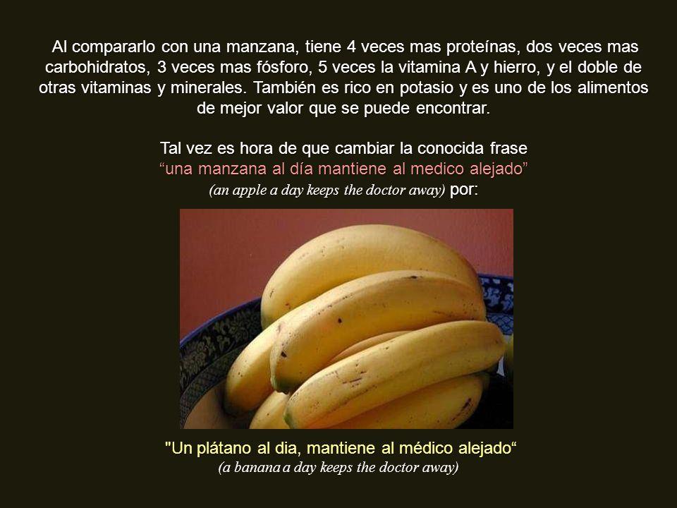 FUMADORES El plátano también puede ayudar a las personas que están tratando de dejar de fumar. Las vitaminas B6 y B12 que contiene, a la vez que el po