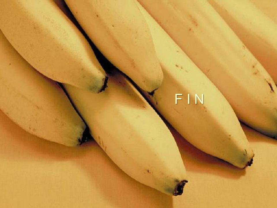 Al compararlo con una manzana, tiene 4 veces mas proteínas, dos veces mas carbohidratos, 3 veces mas fósforo, 5 veces la vitamina A y hierro, y el dob