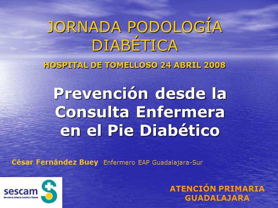 JORNADA PODOLOGÍA DIABÉTICA HOSPITAL DE TOMELLOSO 24 ABRIL 2008 Prevención desde la Consulta Enfermera en el Pie Diabético César Fernández Buey Enferm