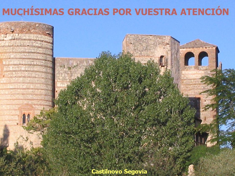 MUCHÍSIMAS GRACIAS POR VUESTRA ATENCIÓN Castilnovo Segovia