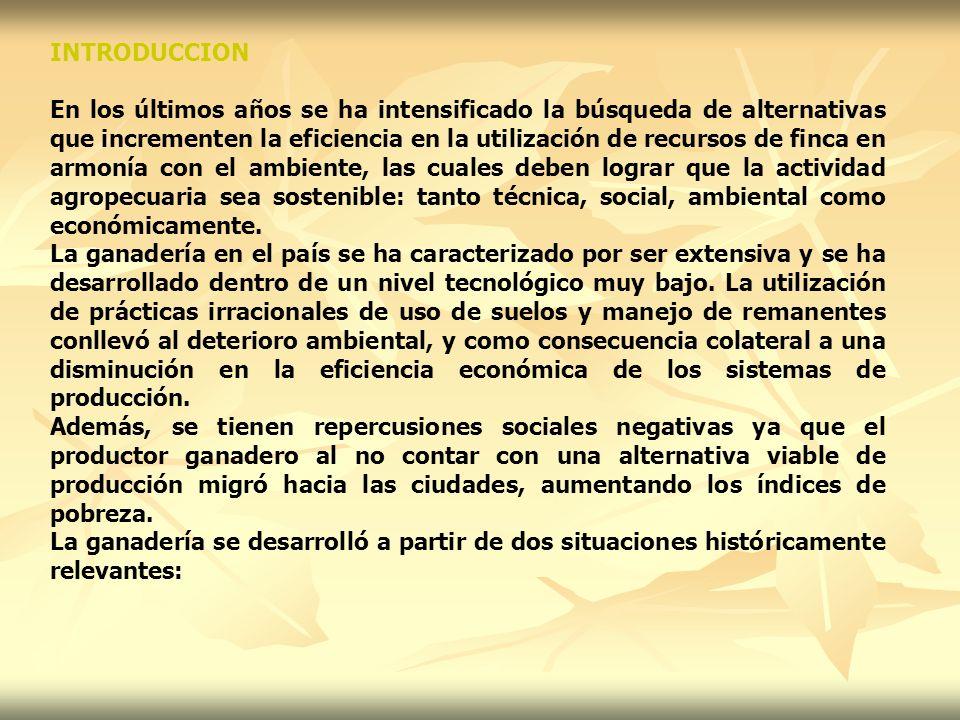 Establecimiento y manejo Para establecer el forraje de corte hay que seguir los siguientes pasos: a- Preparación del terreno 1.