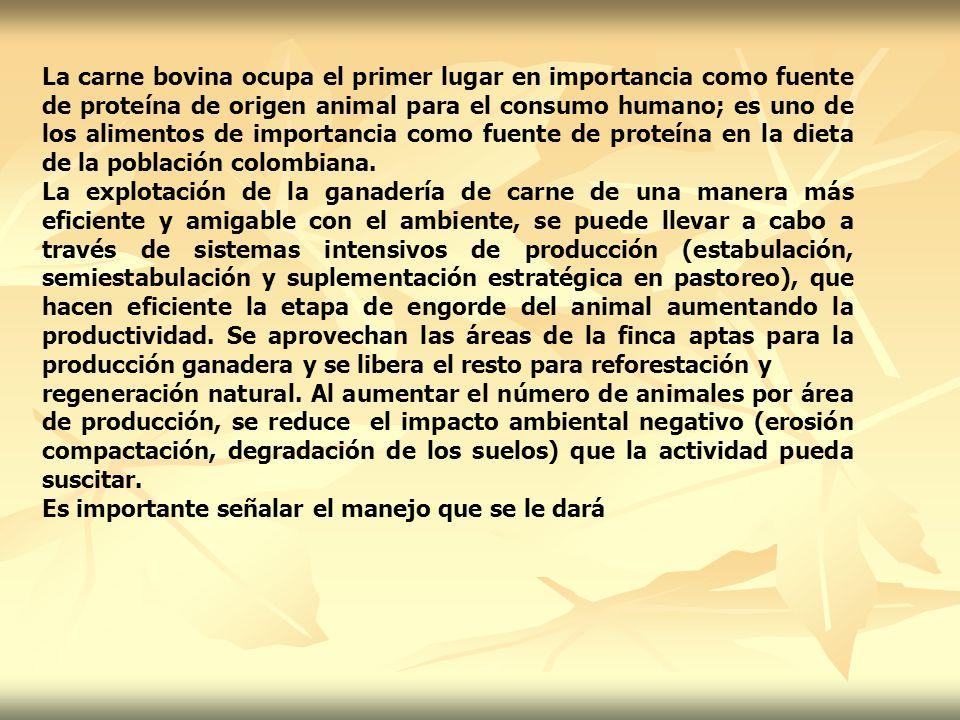 DESCRIPCION DE LOS SISTEMAS INTENSIVOS DE PRODUCCION DE CARNE: Estabulación En este sistema se pretende una mayor producción y mejor calidad de la carne en el menor tiempo posible.