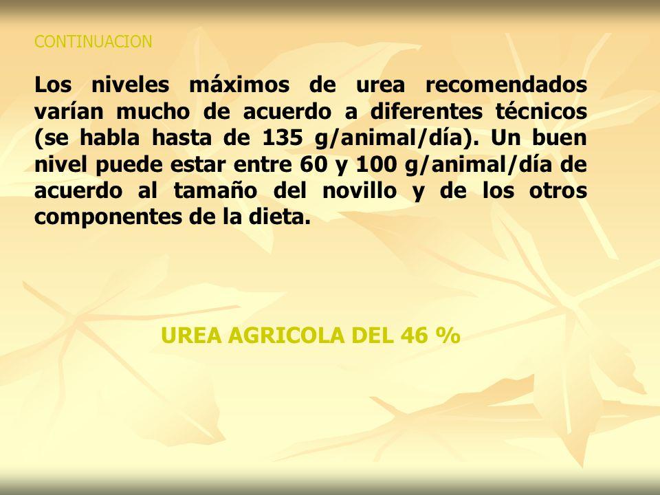 CONTINUACION Los niveles máximos de urea recomendados varían mucho de acuerdo a diferentes técnicos (se habla hasta de 135 g/animal/día). Un buen nive