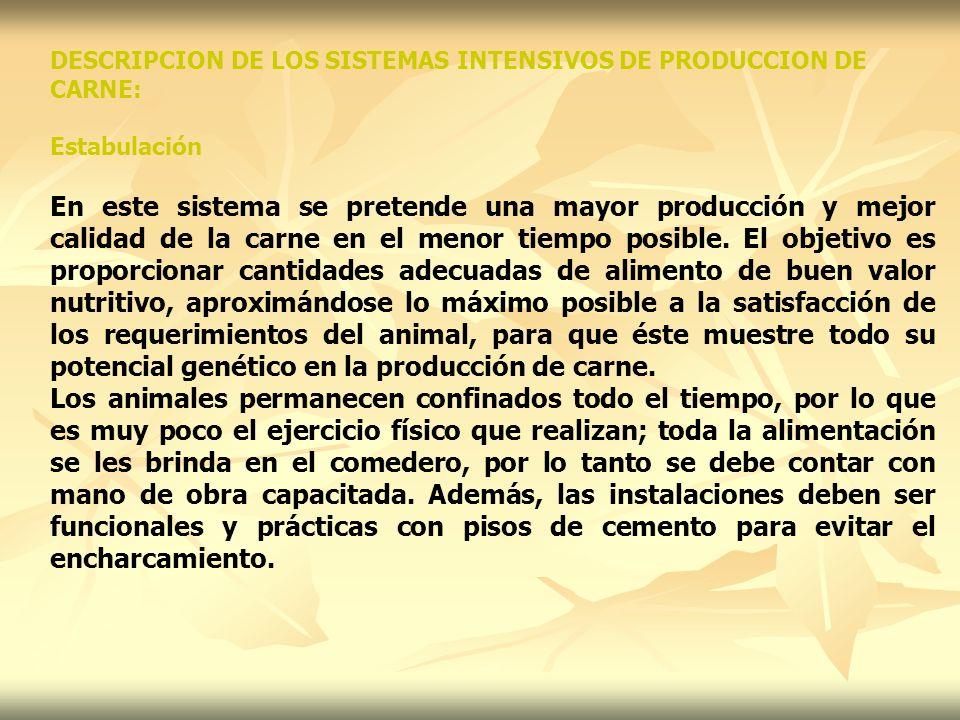 Semiestabulación Este sistema consiste en tener confinados los animales en ciertas horas (de las 7 a.m.