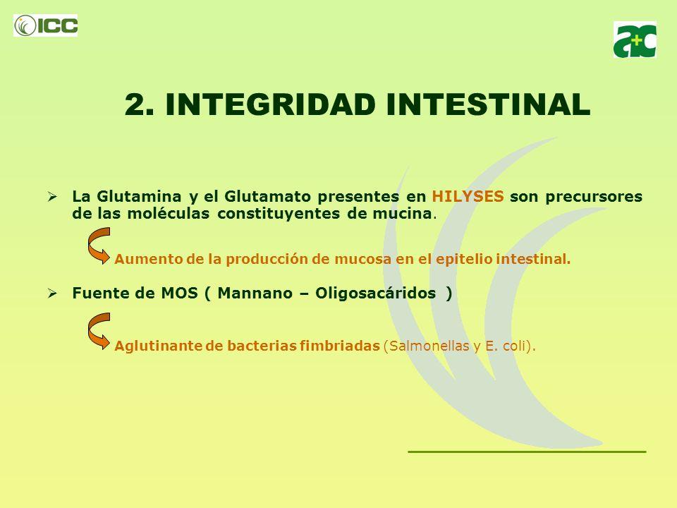 2. INTEGRIDAD INTESTINAL Mejora el crecimiento y la maduración de células epiteliales: Los nucleótidos permiten incrementar la división celular de las