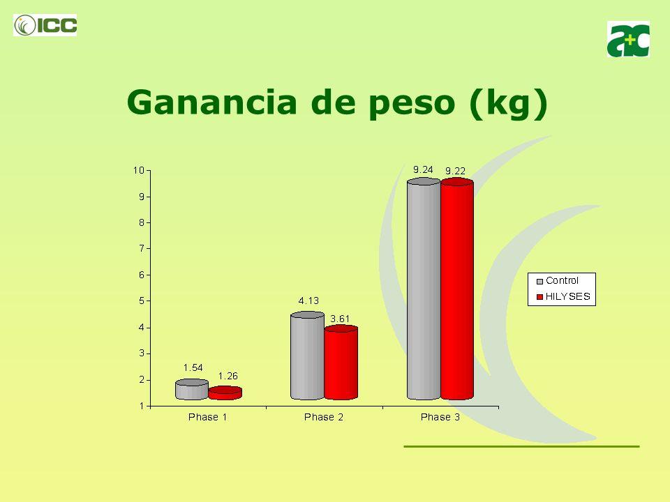 Experiencia 2: HILYSES en substitución del 50% de plasma, en dietas para lechones Número de animales – 216 animales machos Edad inicial, media – 21 dí