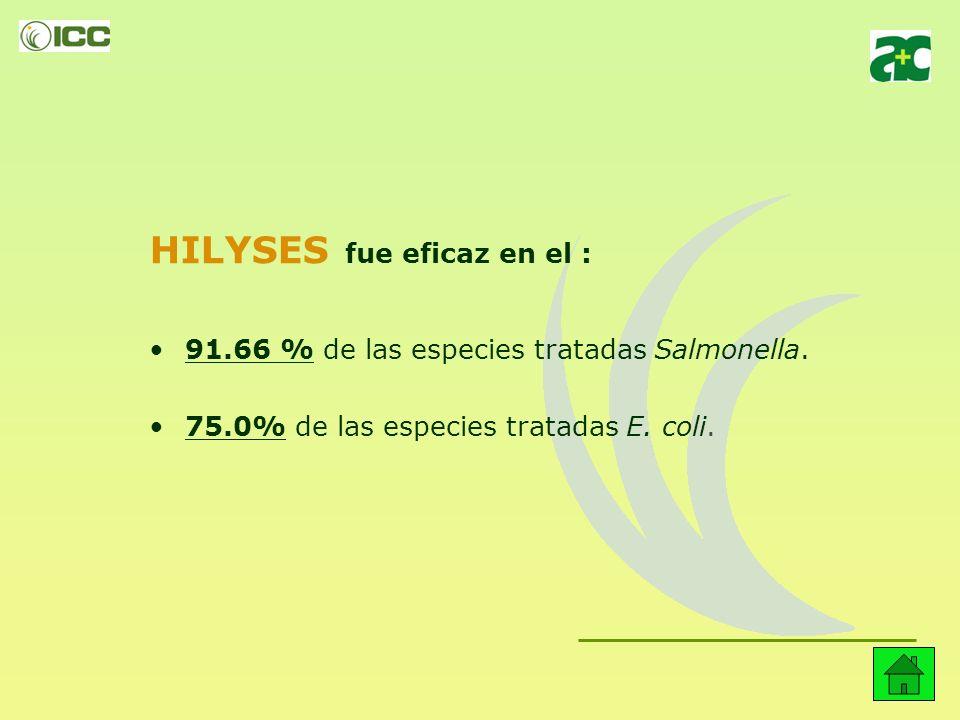 II. Aglomeración con E. coli