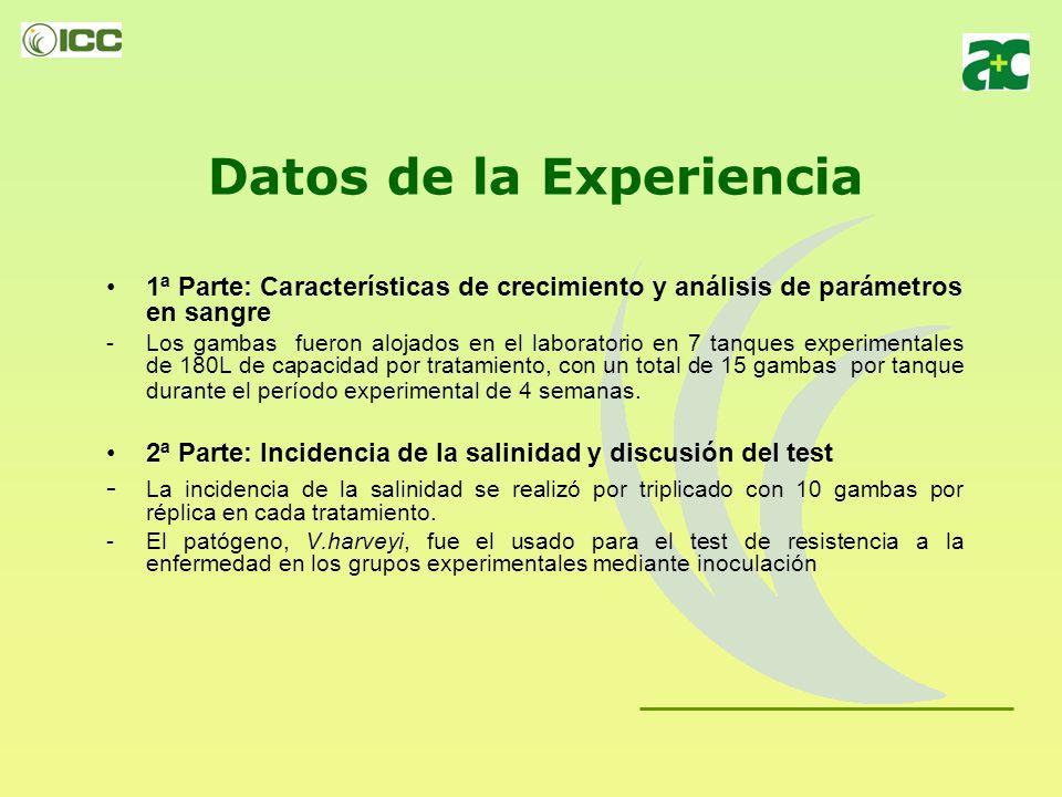 Datos de la prueba Tratamientos: - Tratamiento 1: Dieta Basal - Tratamiento 2: Dieta Basal + 0.3% Hilyses - Tratamiento 3: Dieta Basal + 0.6% Hilyses