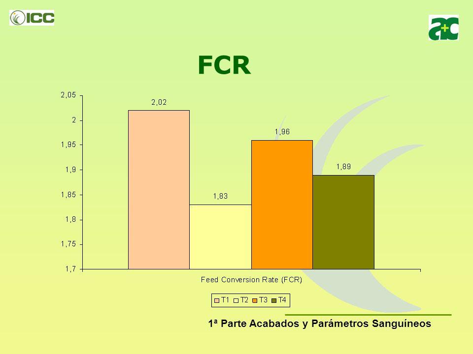 Peso Final (g/gamba) 1ª Parte Acabados y Parámetros Sanguíneos