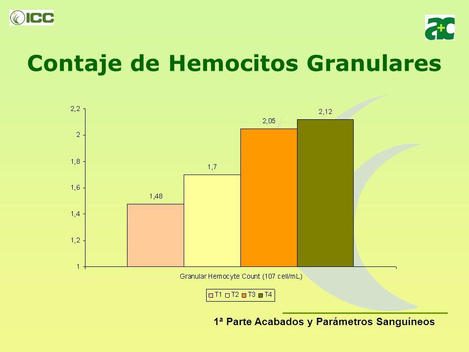 Contaje Total de Hemocitos 1ª Parte Acabados y Parámetros Sanguíneos