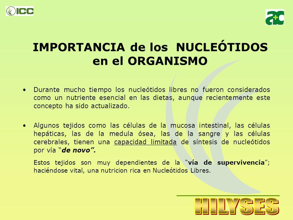 IMPORTANCIA de los NUCLEÓTIDOS en el ORGANISMO Durante mucho tiempo los nucleótidos libres no fueron considerados como un nutriente esencial en las dietas, aunque recientemente este concepto ha sido actualizado.