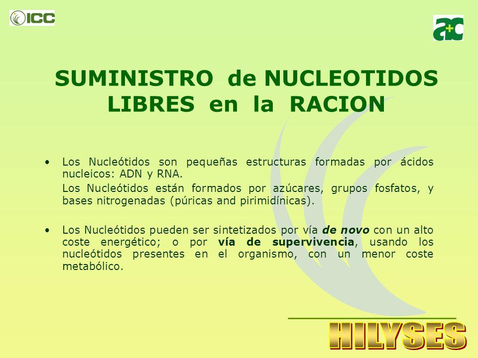 Conclusión La levadura Hidrolizada (HILYSES), a 45g/d de inclusión, aumentó la digestión de Fibra Detergente Neutra, seguida estrechamente por el tratamiento de levadura viva, significativamente.