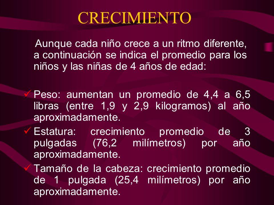BIBLIOGRAFIA www.dietas.com www.saludalia.com www.ymghealthinfo.org www.educacioninicial.com www.socalec.es www.medlineplus.com