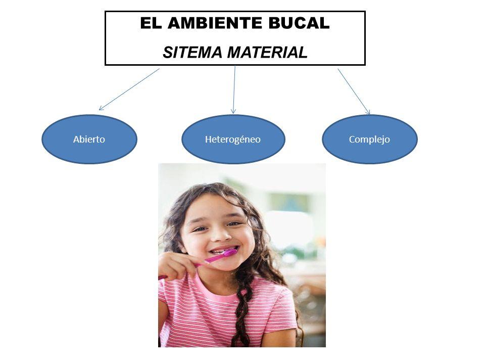 EL AMBIENTE BUCAL SITEMA MATERIAL AbiertoHeterogéneoComplejo